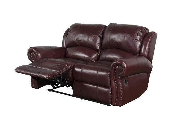 Awe Inspiring Dakota Dual Reclining Loveseat Andrewgaddart Wooden Chair Designs For Living Room Andrewgaddartcom